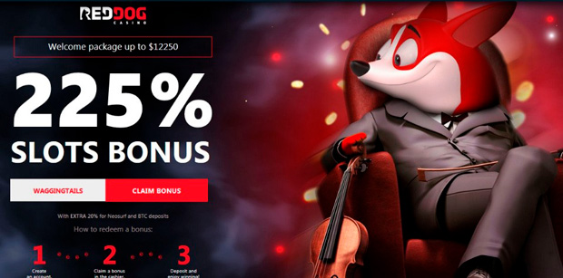 Welcome bonus on the Red Dog Casino landing page